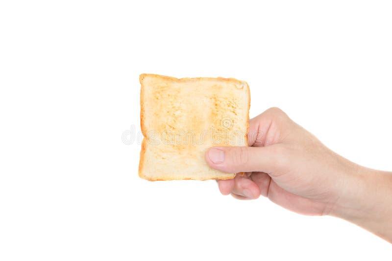 Mano que sostiene el pan de la tostada en el fondo blanco fotografía de archivo libre de regalías