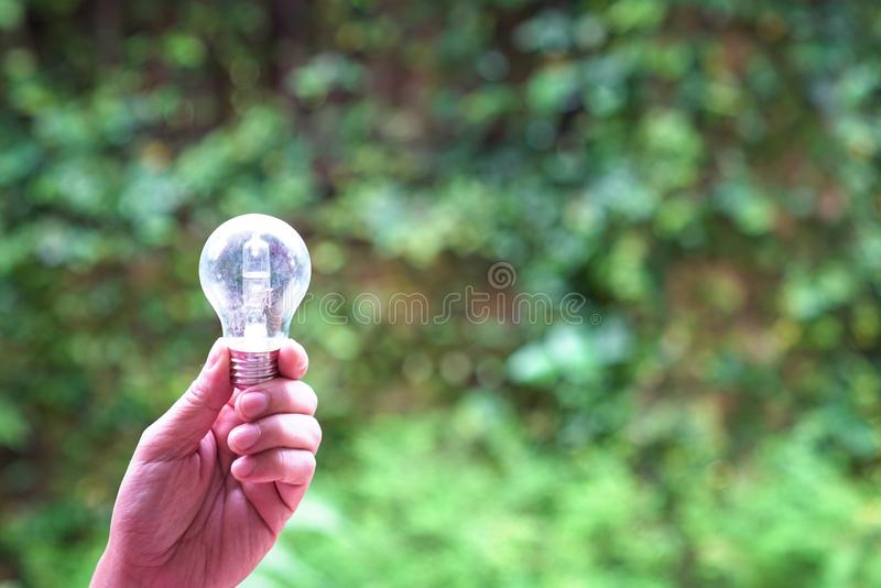 Mano que sostiene la bombilla en el fondo del verde de la naturaleza, concepto de energía solar imágenes de archivo libres de regalías