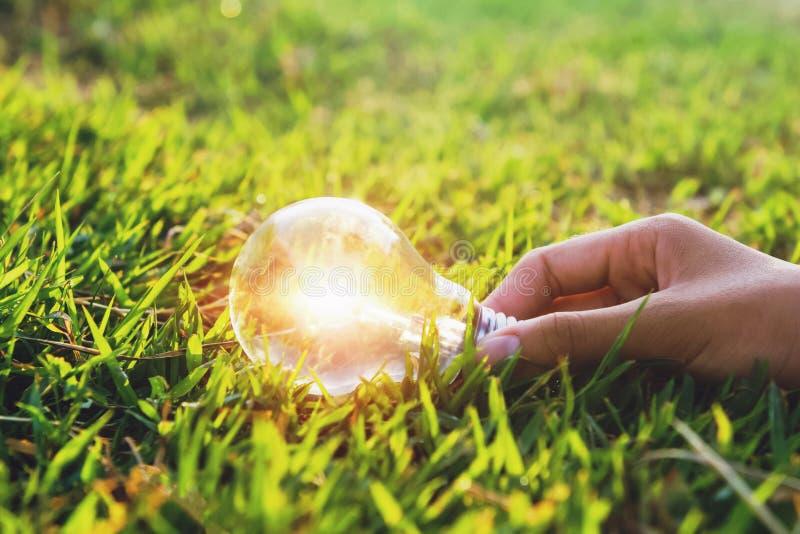 mano que sostiene la bombilla en hierba verde con el fondo de la puesta del sol energ?a limpia del concepto imagen de archivo