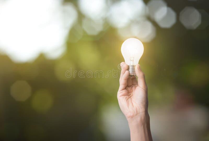 Mano que sostiene la bombilla energía verde del concepto imagen de archivo libre de regalías
