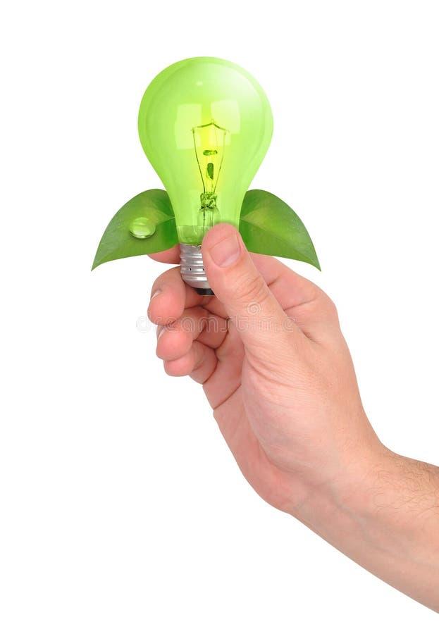 Mano que sostiene la bombilla verde de la energía fotos de archivo