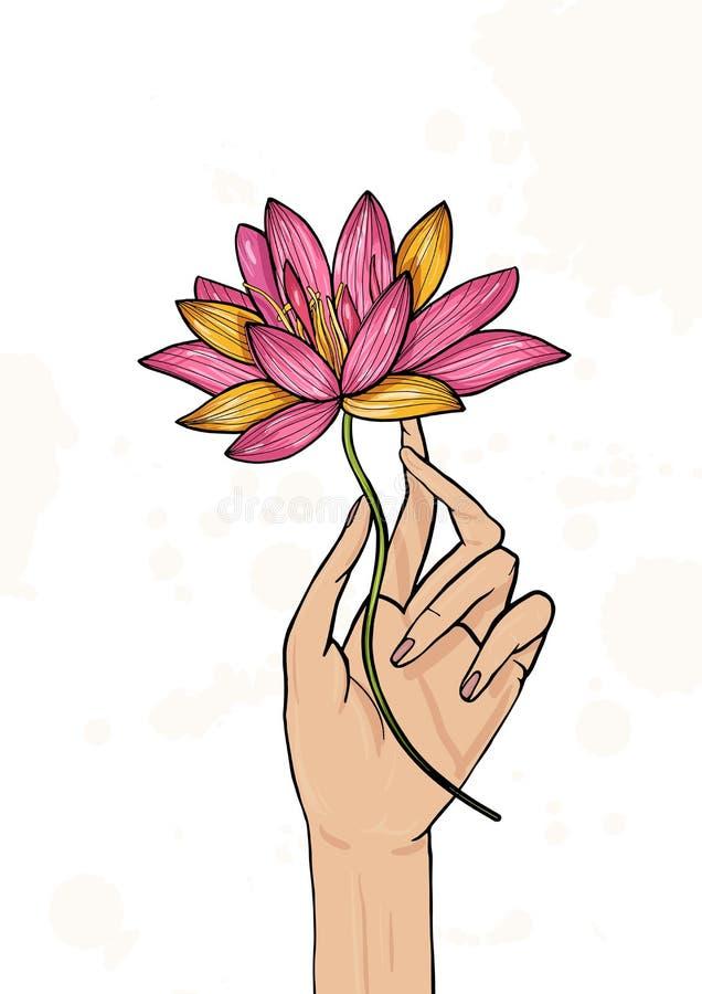 Mano que sostiene la flor de loto Ejemplo dibujado mano colorida yoga, meditación, despertando símbolo stock de ilustración