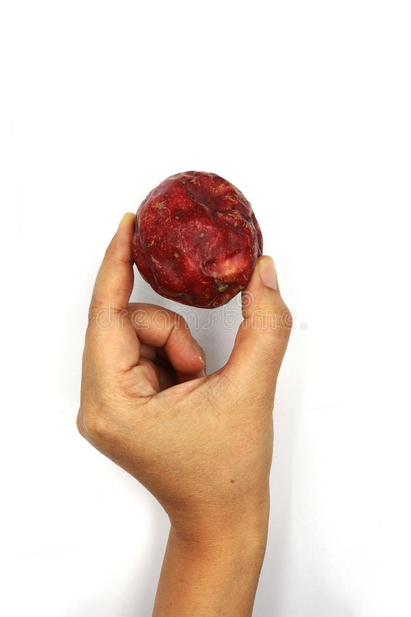 Mano que sostiene la fruta de la pasión aislada en un fondo blanco, cierre de la visión superior para arriba imagenes de archivo