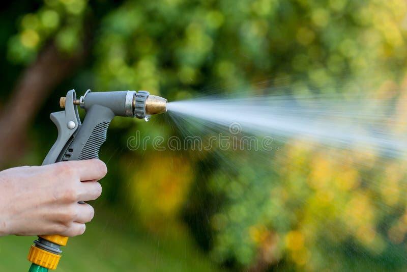 Mano que sostiene la manguera de jardín con el espray de agua imagenes de archivo