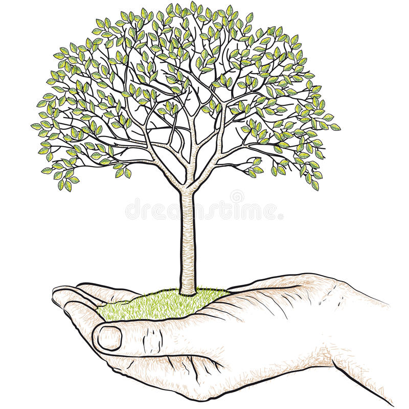 Mano que sostiene un árbol ilustración del vector