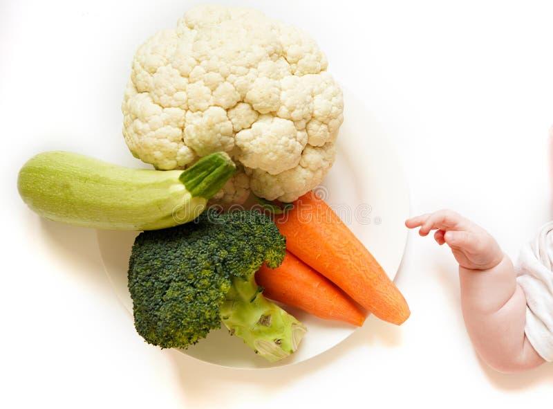 Mano recién nacida linda y mezcla vegetal - bróculi, calabacín, zanahorias y coliflor en el backround blanco fotografía de archivo libre de regalías