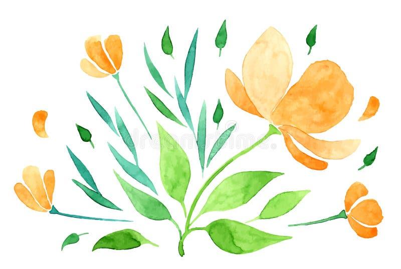 Mano vectorizada de la acuarela que dibuja la flor anaranjada stock de ilustración