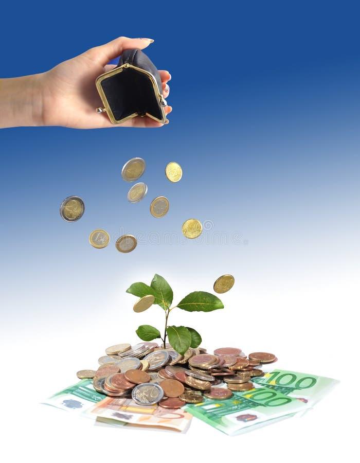 Mano y dinero de la planta. fotografía de archivo