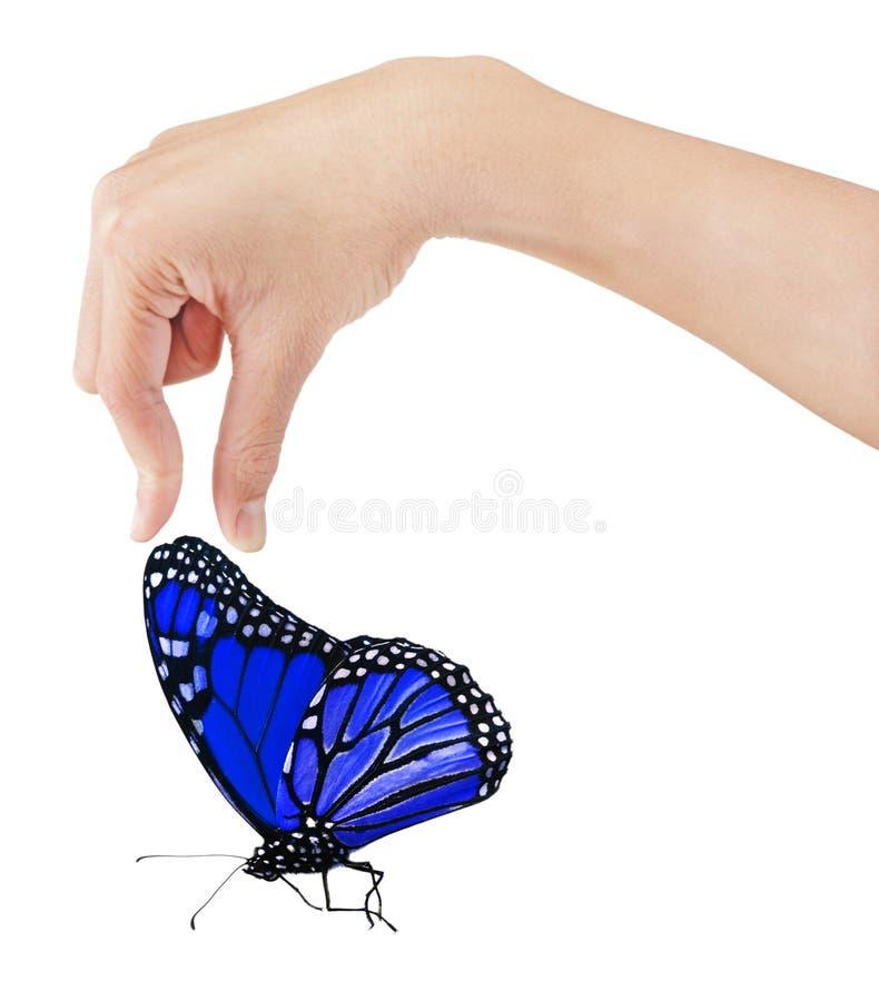 Mano y mariposa fotos de archivo libres de regalías