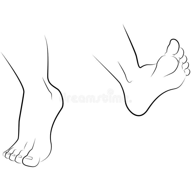 Mano y pie del dibujo libre illustration