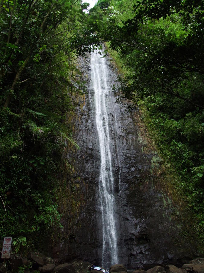 Manoa Falls hidden in jungle near Honolulu, Oahu, Hawaii stock image