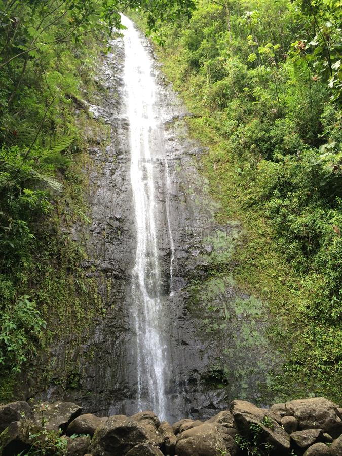 Manoa Waterfalls stock image