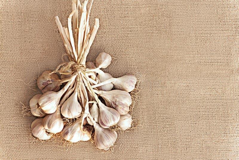Manojo de ajo secado en la arpillera Visión superior fotografía de archivo libre de regalías