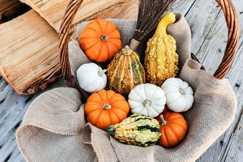 Manojo de calabazas recogidas en una cesta de la paja en una tabla de madera por días de fiesta del otoño imagen de archivo