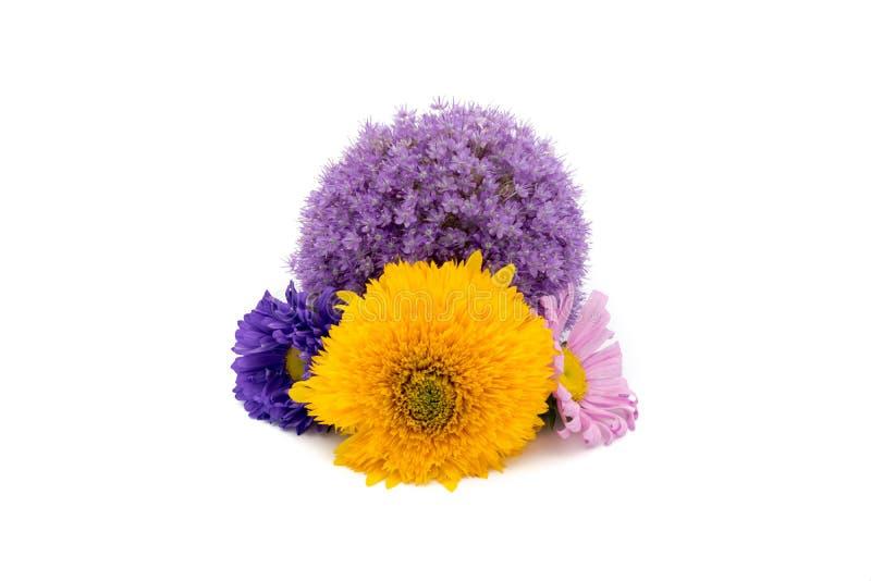 Manojo de diversas flores aisladas en el fondo blanco imagen de archivo libre de regalías