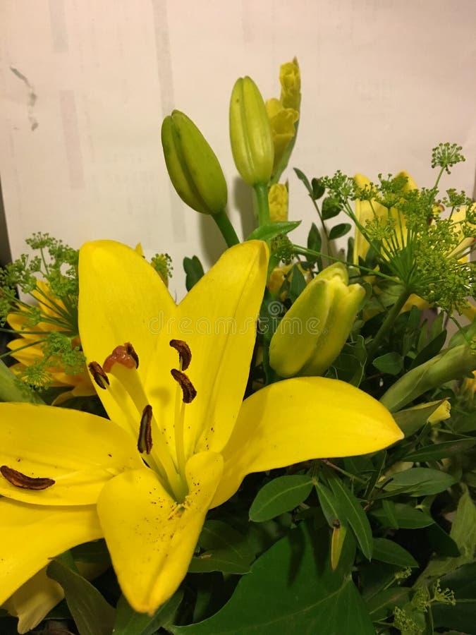 Manojo de flores amarillas: Color de los celos foto de archivo