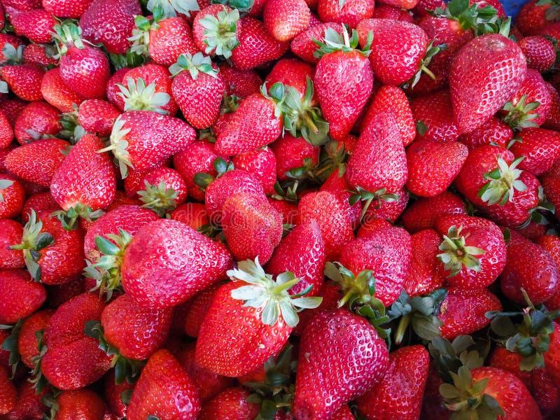Manojo de fresas frescas foto de archivo