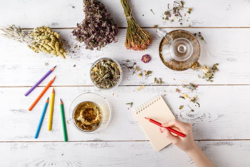 Manojo de hierbas medicinales, de taza de té sano y de bolso de coneflowers sanos secos en el tablero de madera El perforatum her foto de archivo libre de regalías