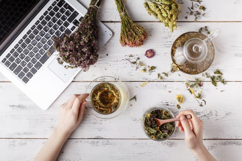 Manojo de hierbas medicinales, de taza de té sano y de bolso de coneflowers sanos secos en el tablero de madera El perforatum her fotografía de archivo