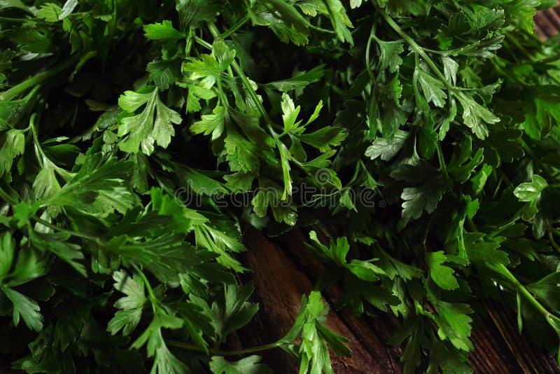 Manojo de hojas verdes frescas del perejil en fondo oscuro fotos de archivo