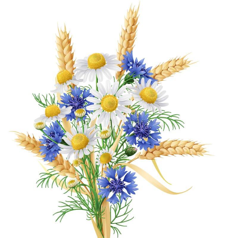 Manojo de la manzanilla salvaje, de los acianos y de los oídos del trigo libre illustration
