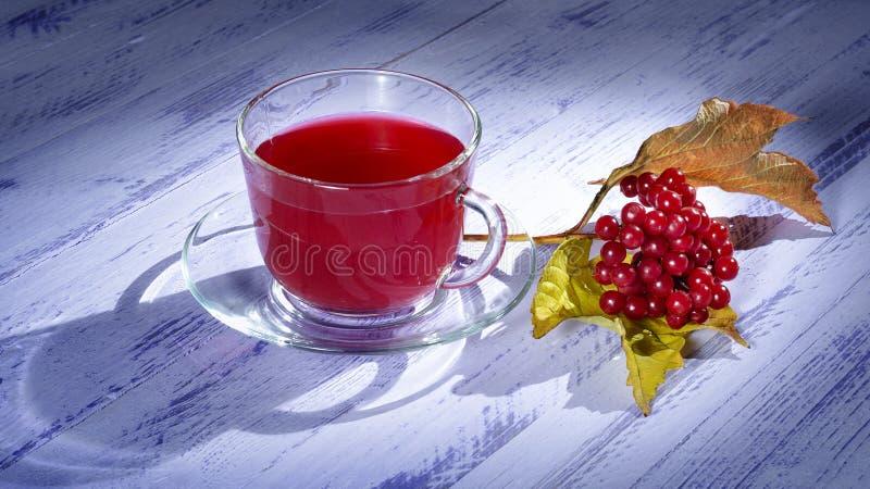 Manojo de la taza del jugo del Viburnum foto de archivo libre de regalías