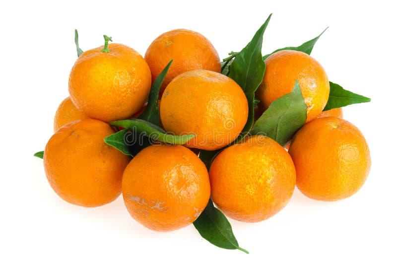 Manojo de mandarinas frescas con las hojas aisladas en el fondo blanco imagen de archivo libre de regalías