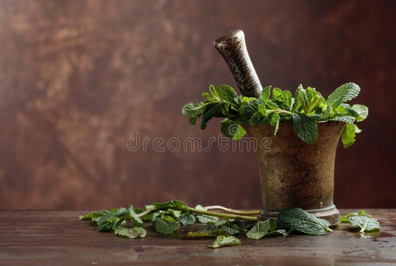 Manojo de menta orgánica verde fresca en mortero imagen de archivo