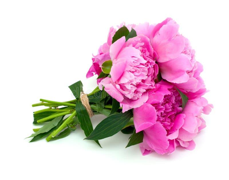 Manojo de peonías rosadas en blanco foto de archivo