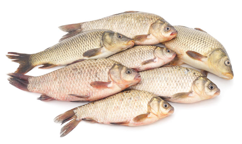 Manojo de pescados crudos imagenes de archivo