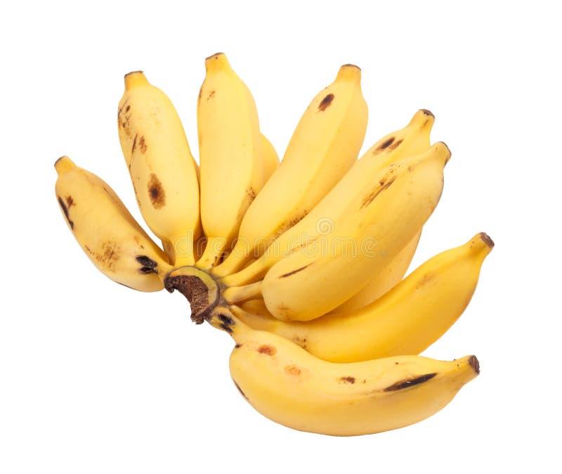 Manojo de plátanos fotografía de archivo libre de regalías