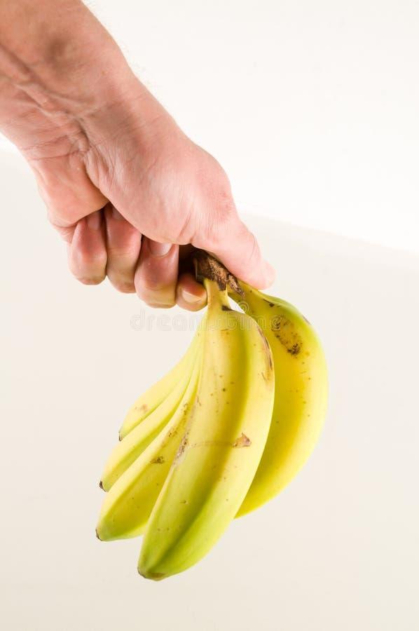 Manojo de plátanos aislados fotos de archivo