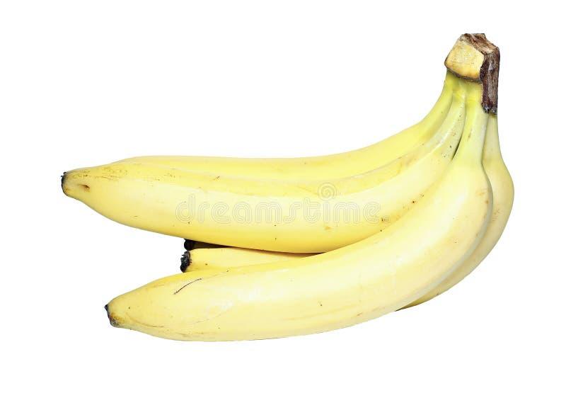 Manojo de plátanos amarillos aislados imagen de archivo