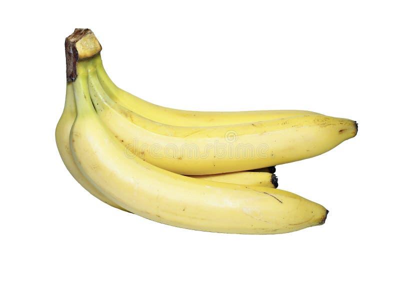 Manojo de plátanos amarillos aislados imagen de archivo libre de regalías