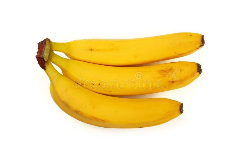 Manojo de plátanos amarillos aislados en blanco imagen de archivo libre de regalías