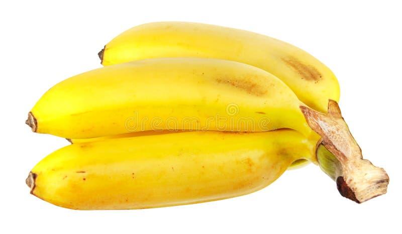 Manojo de plátanos amarillos maduros aislados en blanco foto de archivo libre de regalías