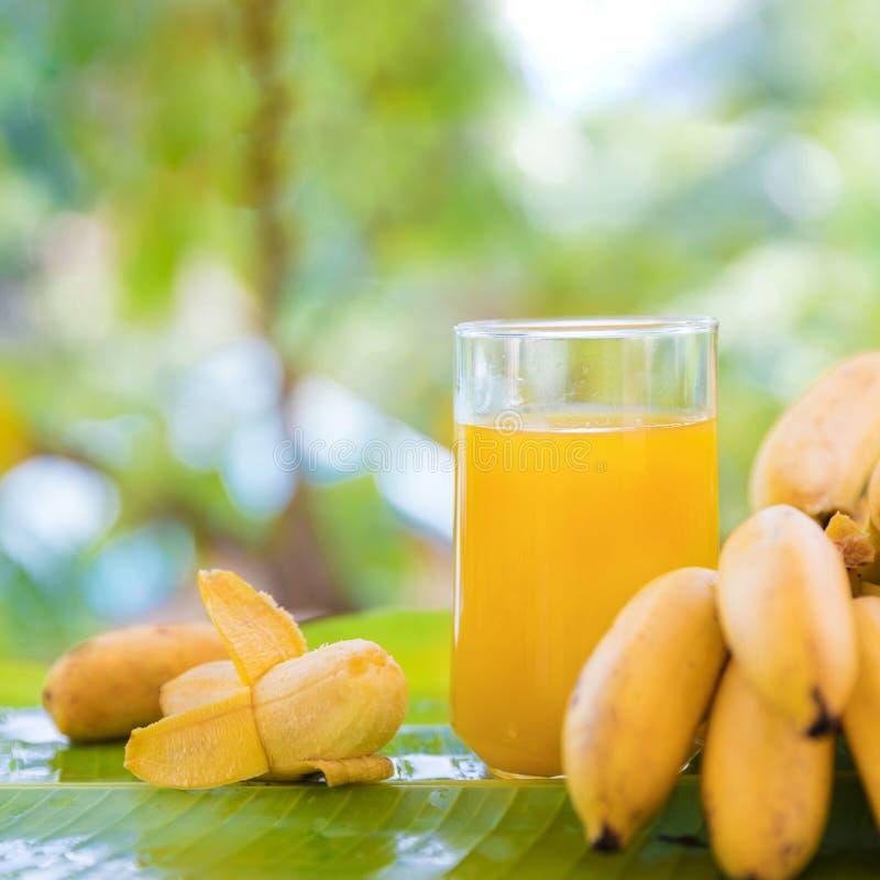 Manojo de plátanos en la hoja con la bebida del jugo del smoothie en vidrio fotografía de archivo