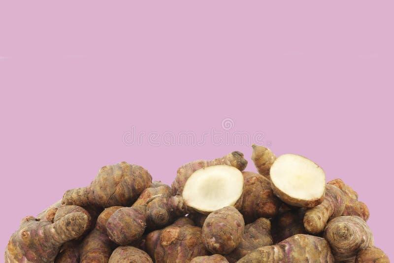 Manojo de raíces del topinambur (tuberosus del helianthus) y de un corte uno imagenes de archivo