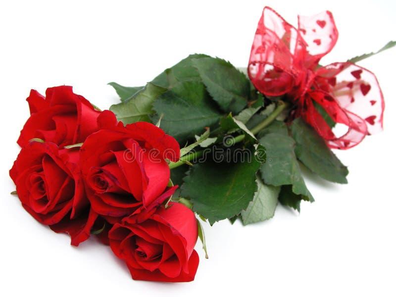 Manojo de rosas rojas fotos de archivo