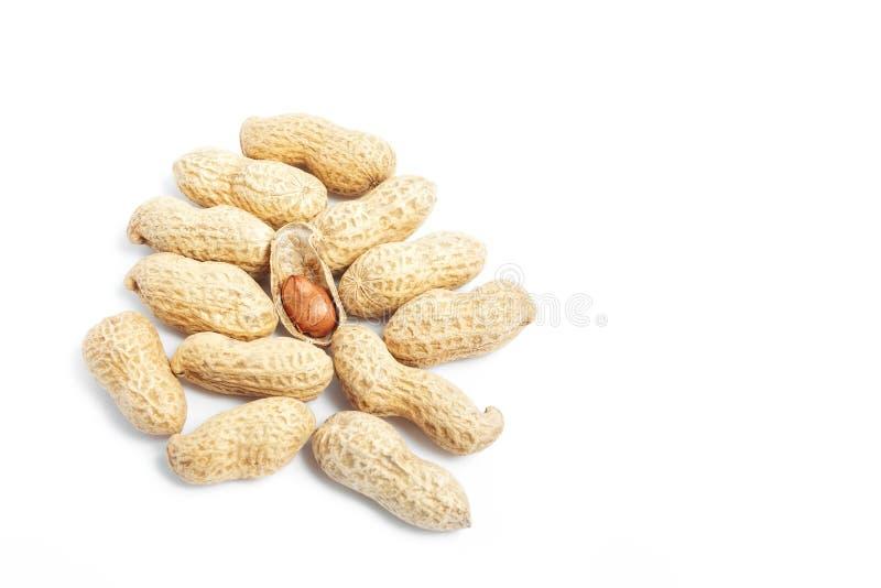 Manojo de shelles del cacahuete imagen de archivo libre de regalías