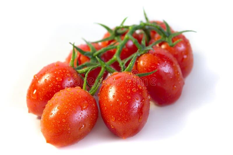 Manojo de tomates de cereza imagen de archivo