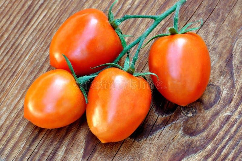 Manojo de tomates de Piccadilly foto de archivo