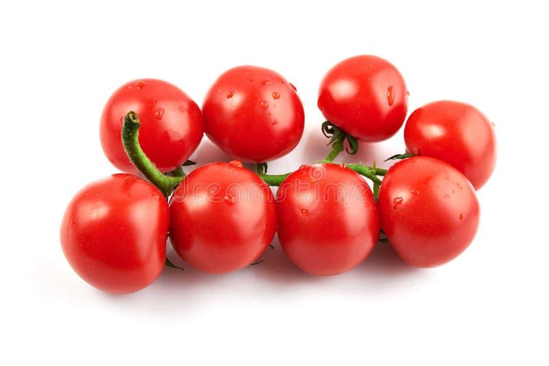 Manojo de tomates frescos fotos de archivo libres de regalías