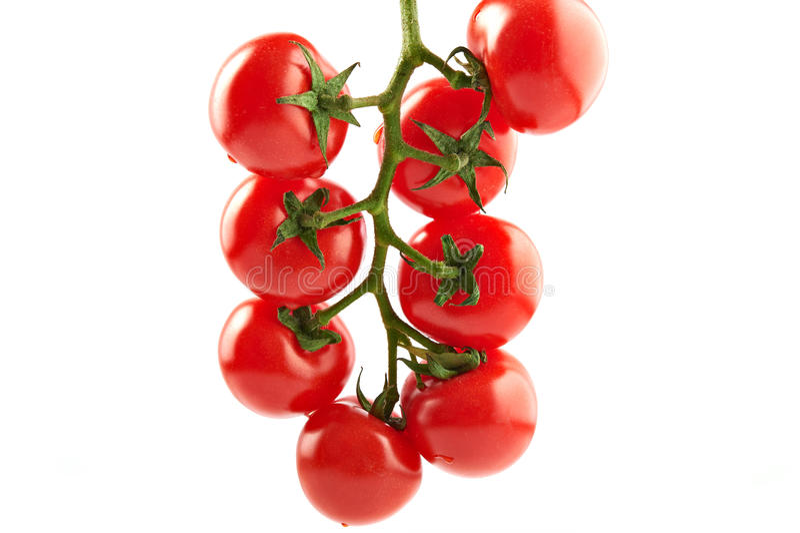 Manojo de tomates frescos foto de archivo