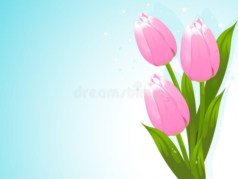 Manojo de tulipanes ilustración del vector