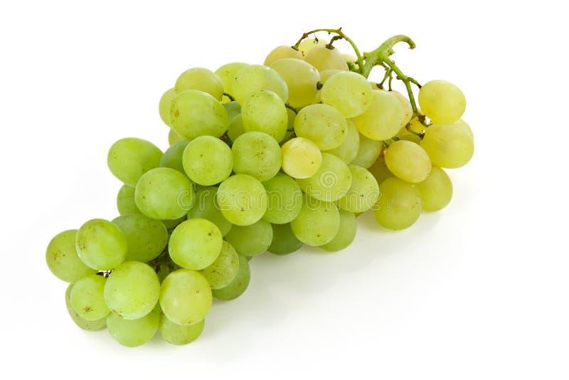 Manojo de uvas blancas foto de archivo