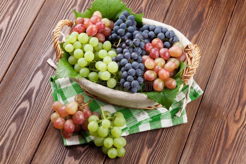 Manojo de uvas rojas, púrpuras y blancas en cesta imagenes de archivo