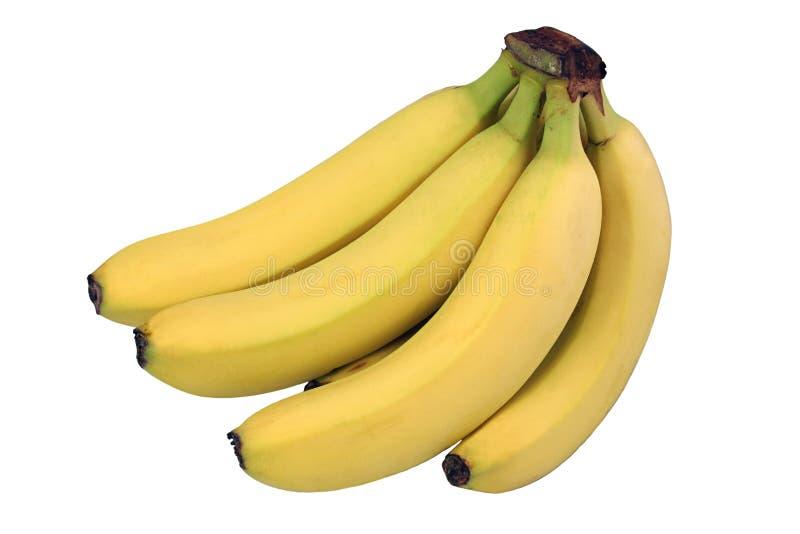 Manojo del plátano aislado imagenes de archivo