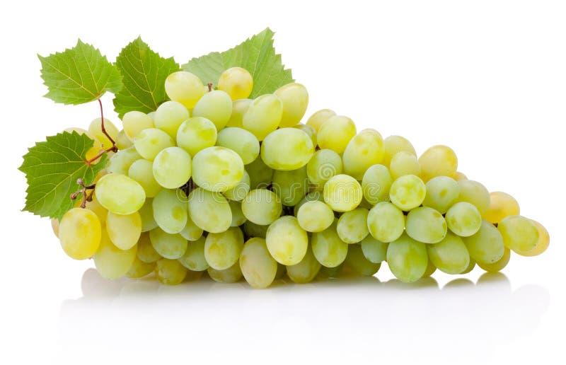 Manojo fresco de uvas verdes con las hojas aisladas en el backgr blanco fotos de archivo libres de regalías