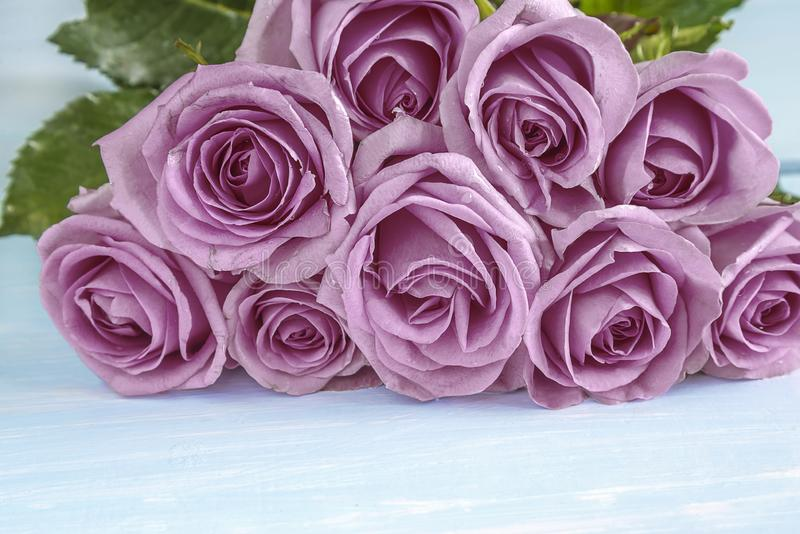 Manojo grande hermoso de flores color de rosa púrpuras imagen de archivo libre de regalías